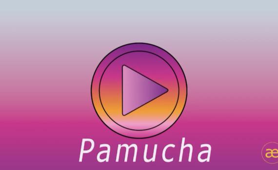 "Screenshot des Beitragsformates ""PaMuCha"""